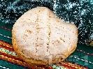 Рецепта Содена питка от брашно, вода и оцет за Бъдни вечер с паричка (без кисело мляко и без сирене)